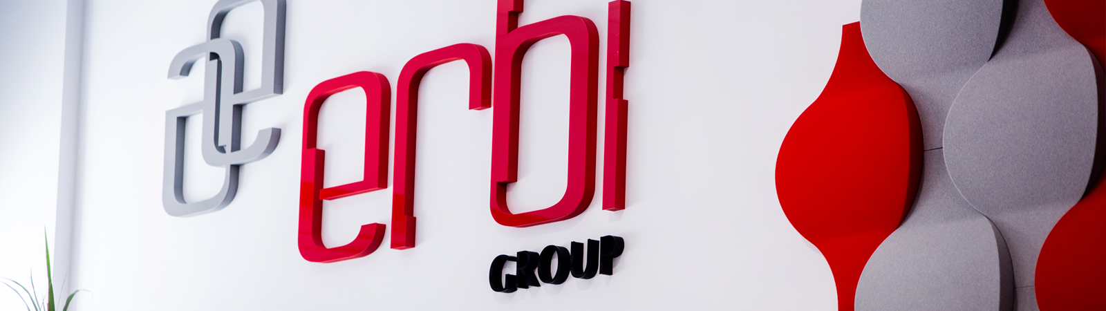 ERBI Group